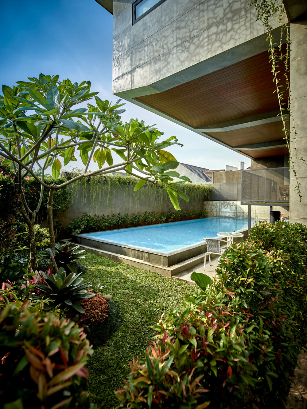 This is the pool area of the house surrounded by lush landscaping and concrete walls.
