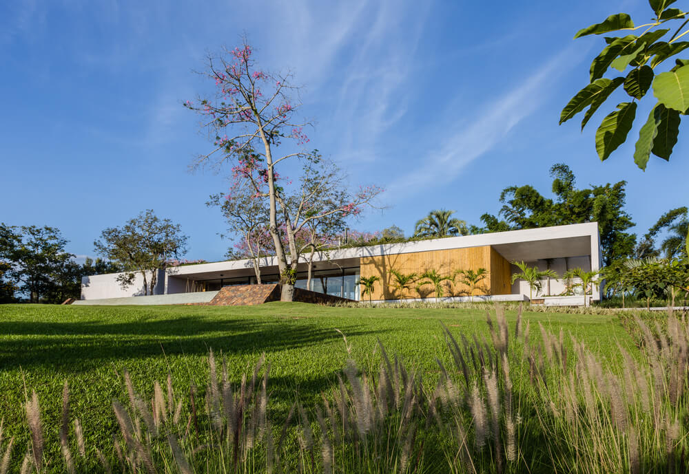 This modern house is adorned with a lush landscape that has trees, shrubs and a large lawn of grass.