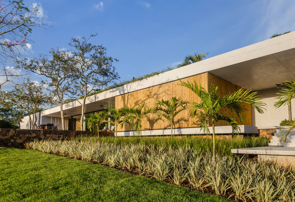 These exterior bamboo walls are complemented by the line of medium-sized tropical trees.