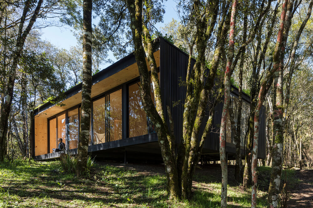 The house has a modern design tha makes its stand out against the surrounding tall trees.