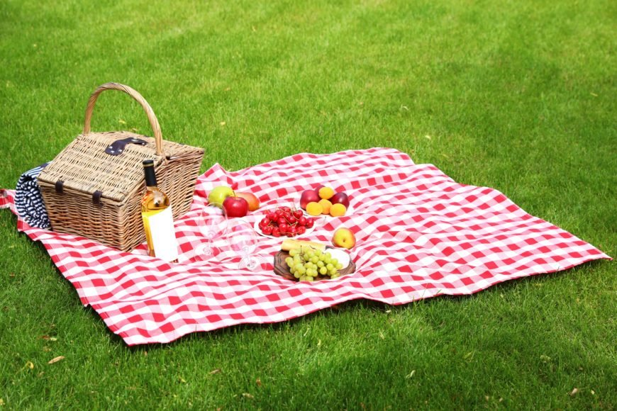 Red and White Checkerboard Picnic Blanket in the Grass with Picnic Basket and Fruit