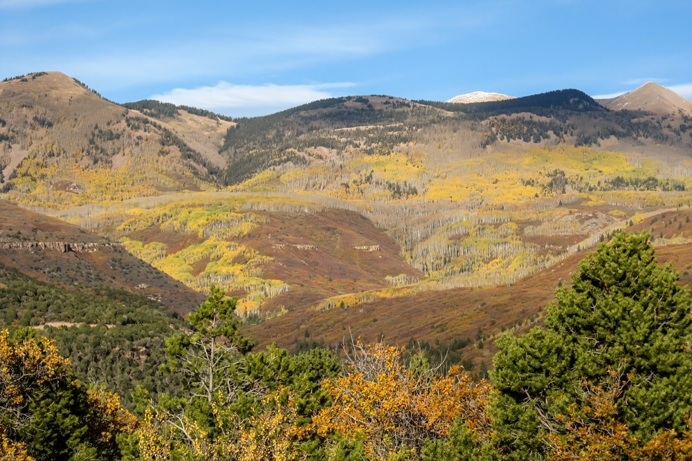 Mountains covered in scrub oaks with fall colors.