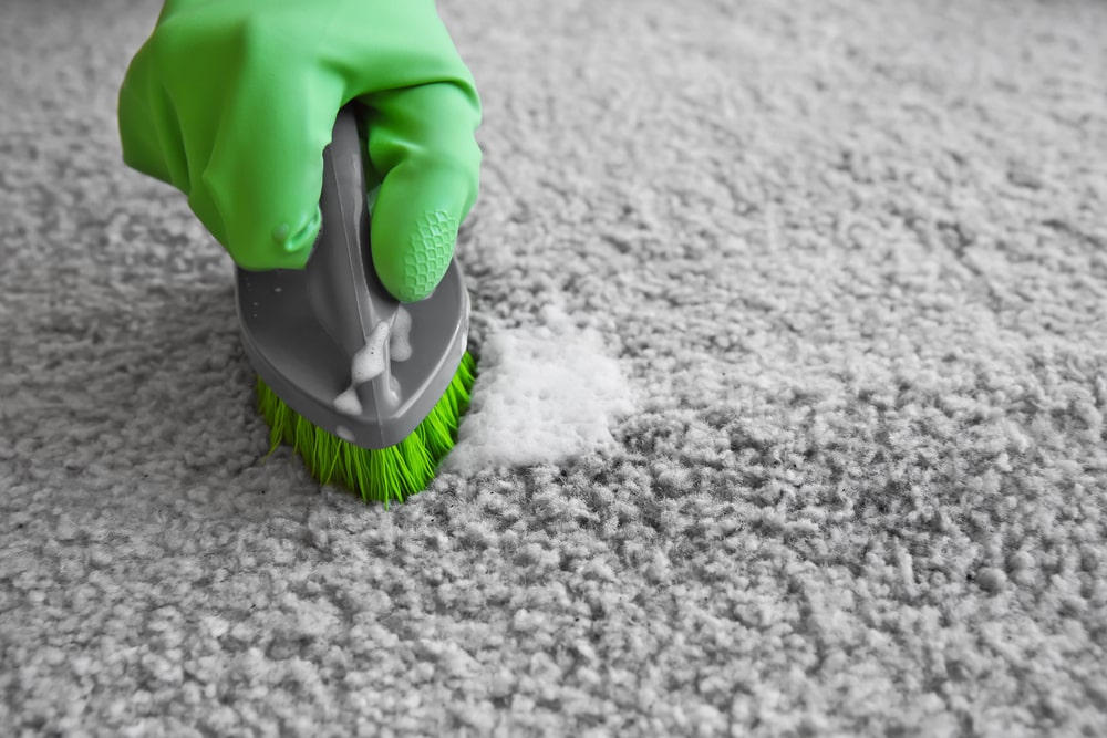 A gloved hand scrubbing the gray carpet with a hand brush.