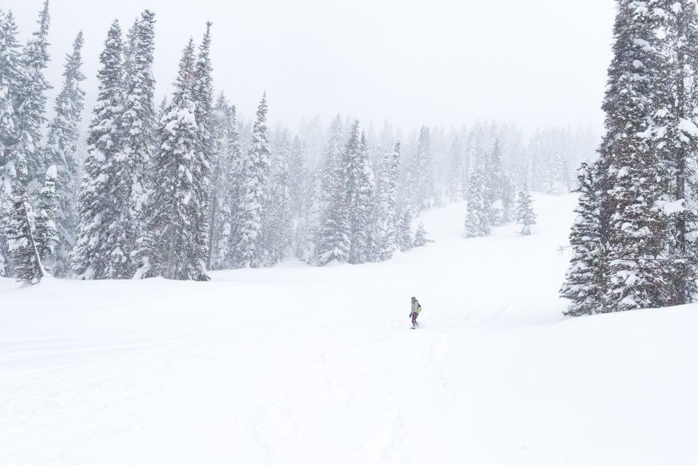 Mountain resort with tamarack trees during winter.