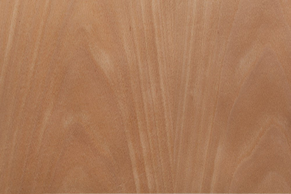 A close look at the American Beech wood grains.