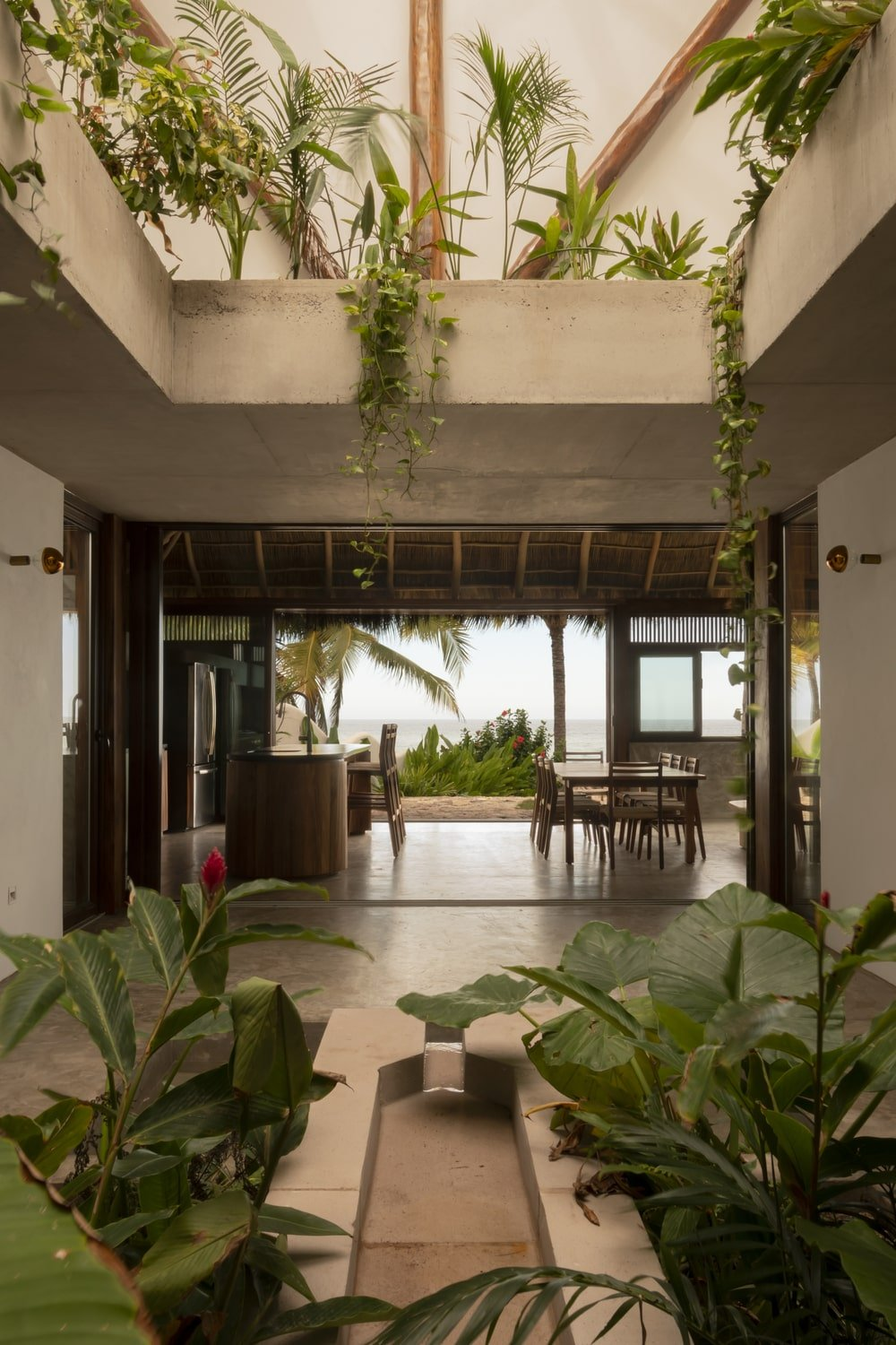 This view showcases more of the plants above the open ceiling and a view of the kitchen and dining area on the far side.