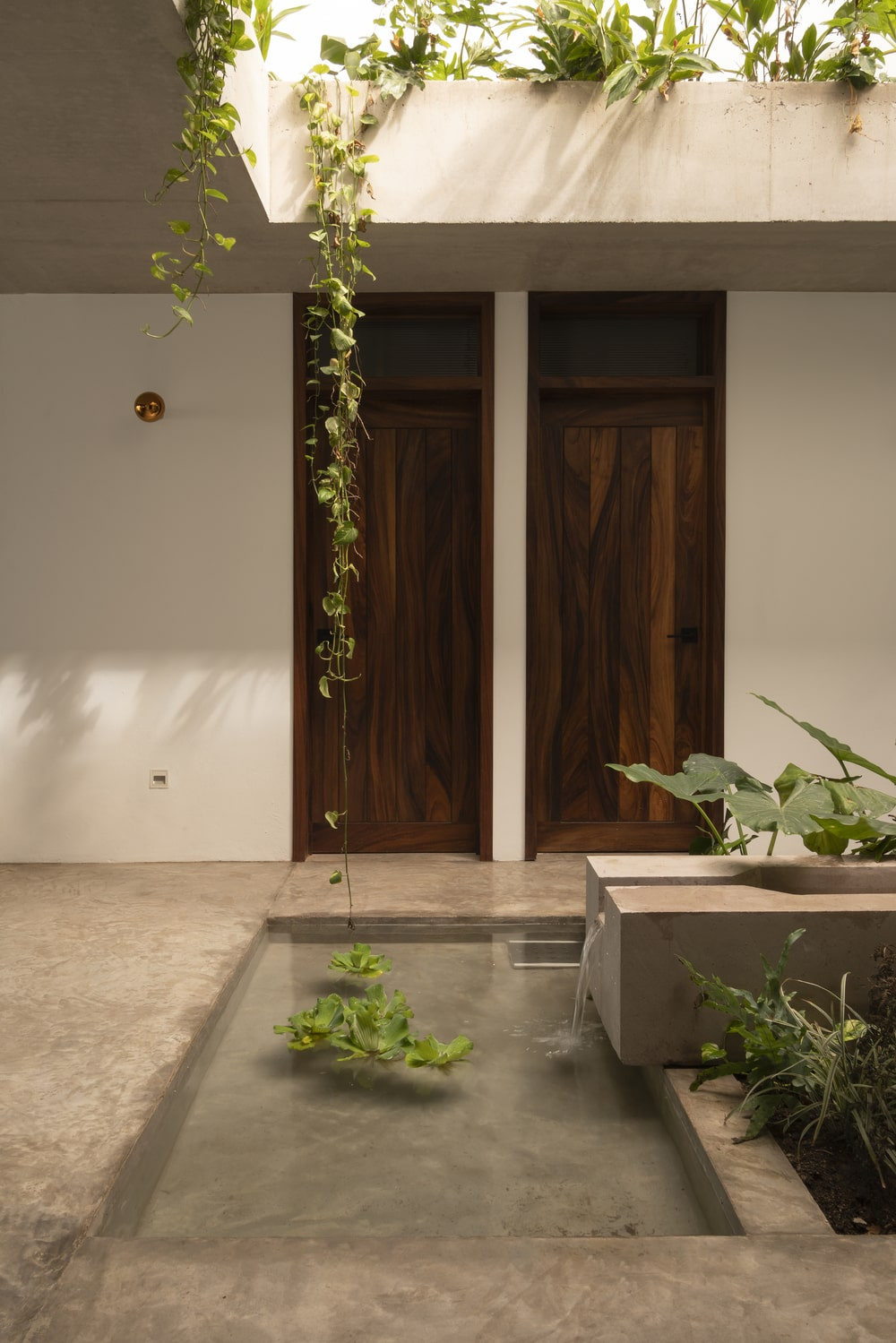 This is a close look at the miniature garden and the hanging plants from the open ceiling above the garden.