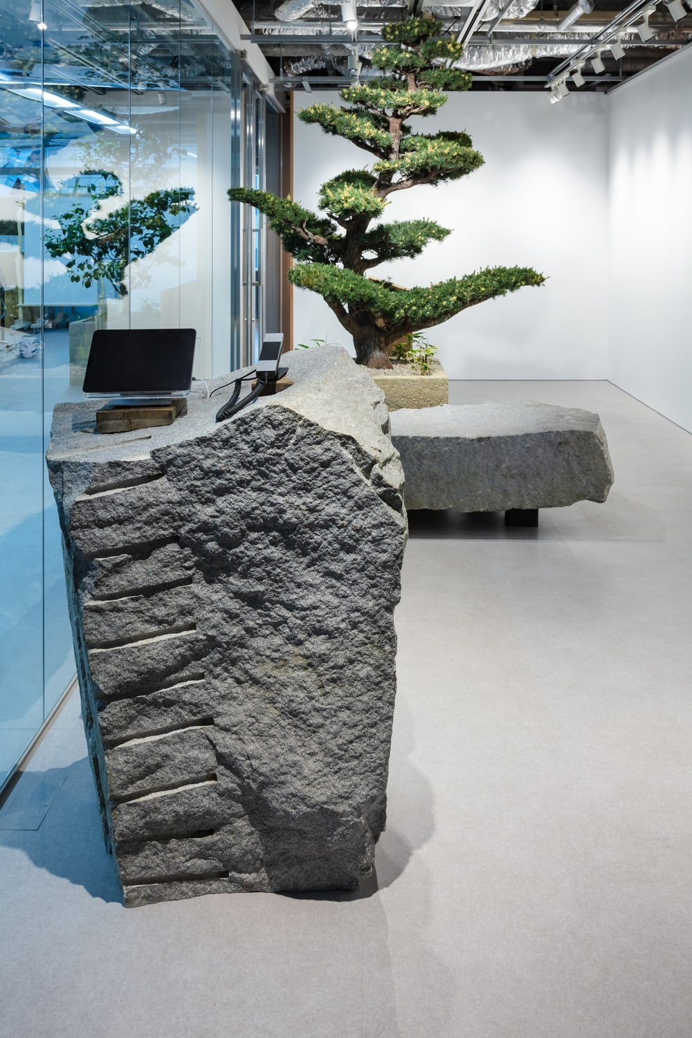 This is a close look at one of the decorative rocks by the glass wall with a textured look.