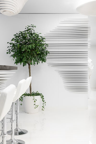 This is a close look at the large potted plant at the side of the bar beside the patterned wall.