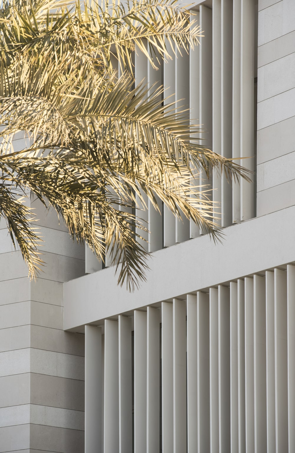 This is a closer look at the vertical panels of the house and how the tropical trees complement them.