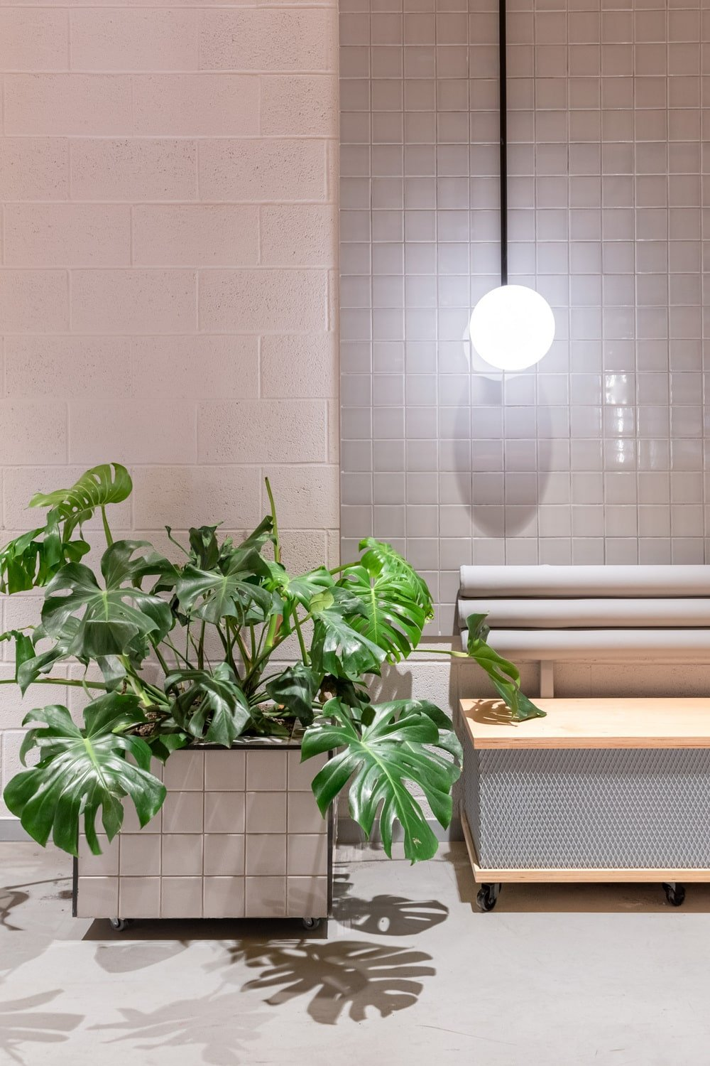 This is a close look at one corner of the area that has a built-in bench, a potted plant and a pendant light above.