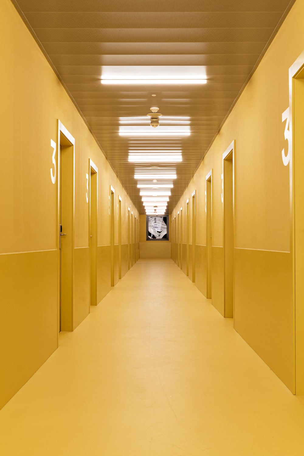 This is hallway inside the residency that has consistent mustard yellow walls, floor and ceiling.