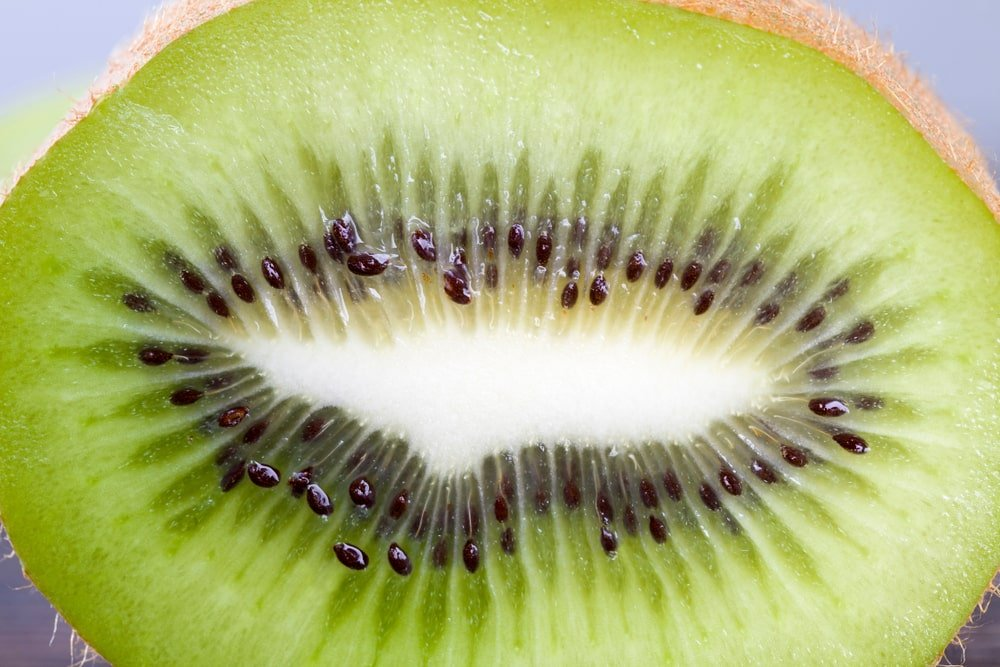 This is a close look at a core of a kiwi with small seeds.