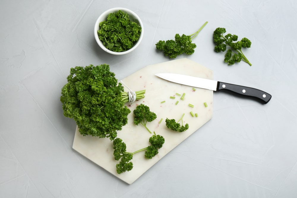 Fresh curly parsley on a chopping board with a knife.