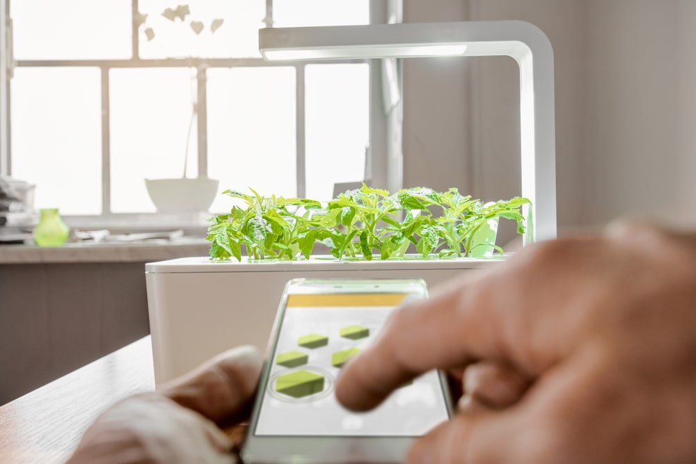 A man controlling the light of his indoor herb garden.