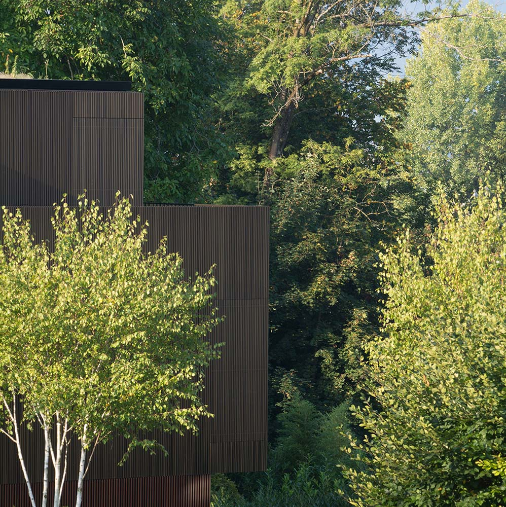 This is an exterior view of the house edge with dark brown exterior walls that pair well with the surrounding tall trees.