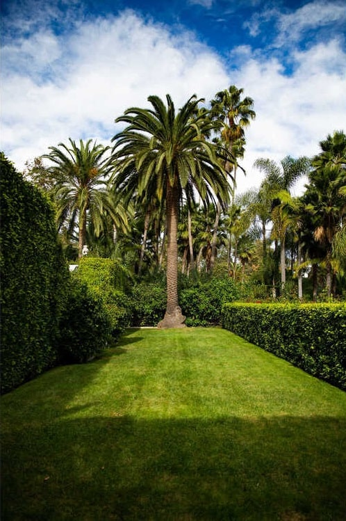 This is a close look at the portion of the garden that has a tall tropical trees on the far side showcasing a tropical background to the grass lawns and hedges. Image courtesy of Toptenrealestatedeals.com.