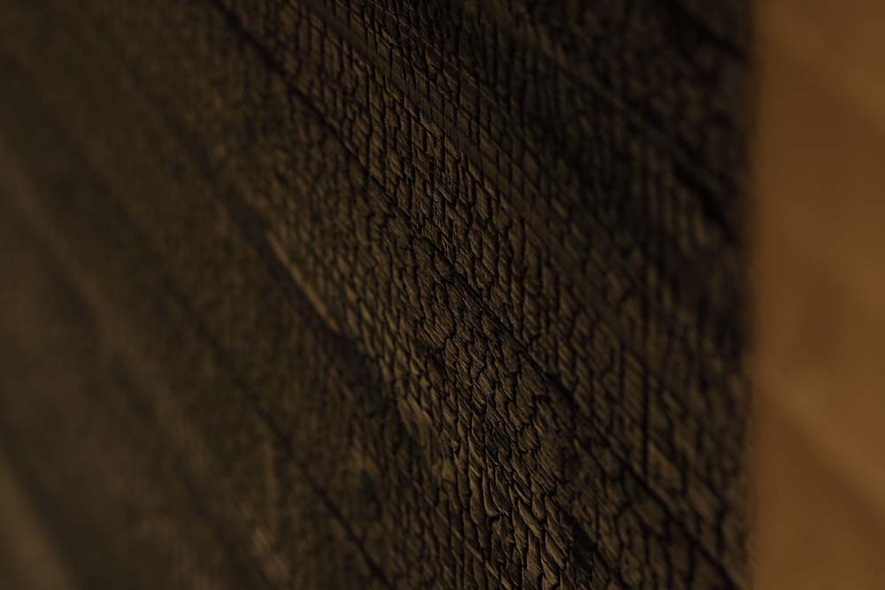 This is a close look at the dark wooden wall showcasing the texture and tone.