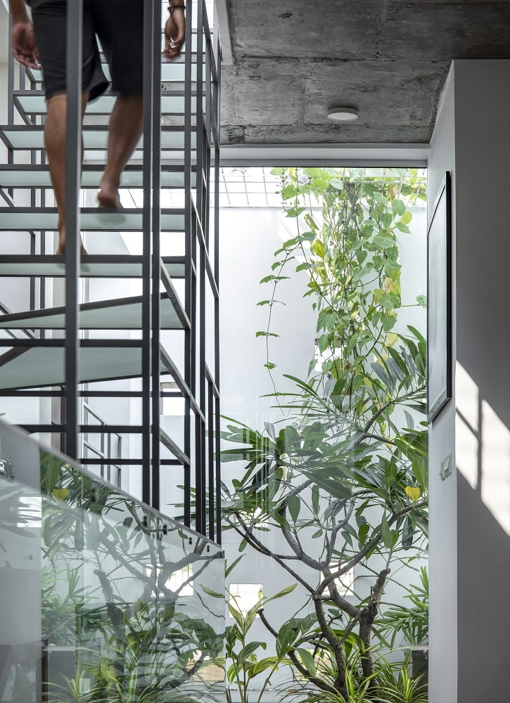 This is another view of the modern unique staircase adorned with trees and plants on the side.