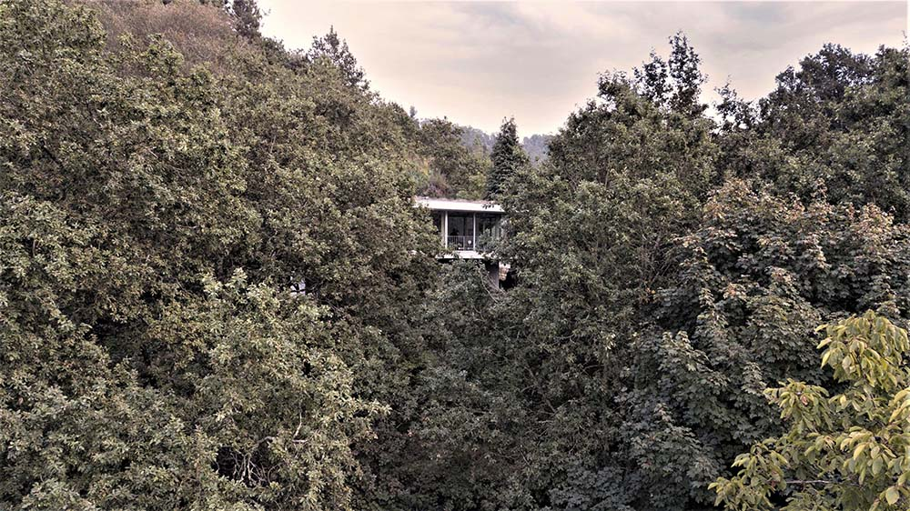 This is a view of the house that is almost completely hidden away by the surrounding thick foliage of tall trees.