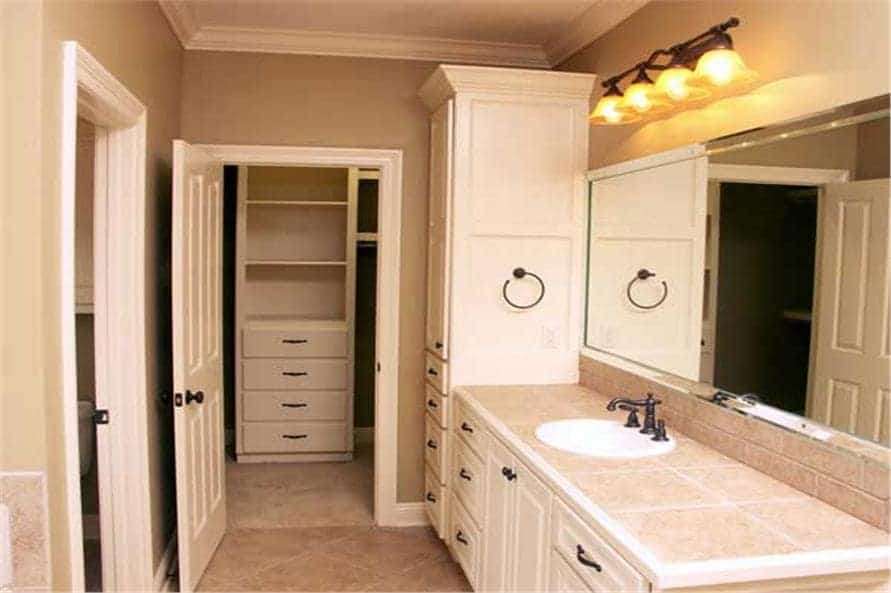 Primary bathroom with a sink vanity, a tall cabinet, and a walk-in closet.