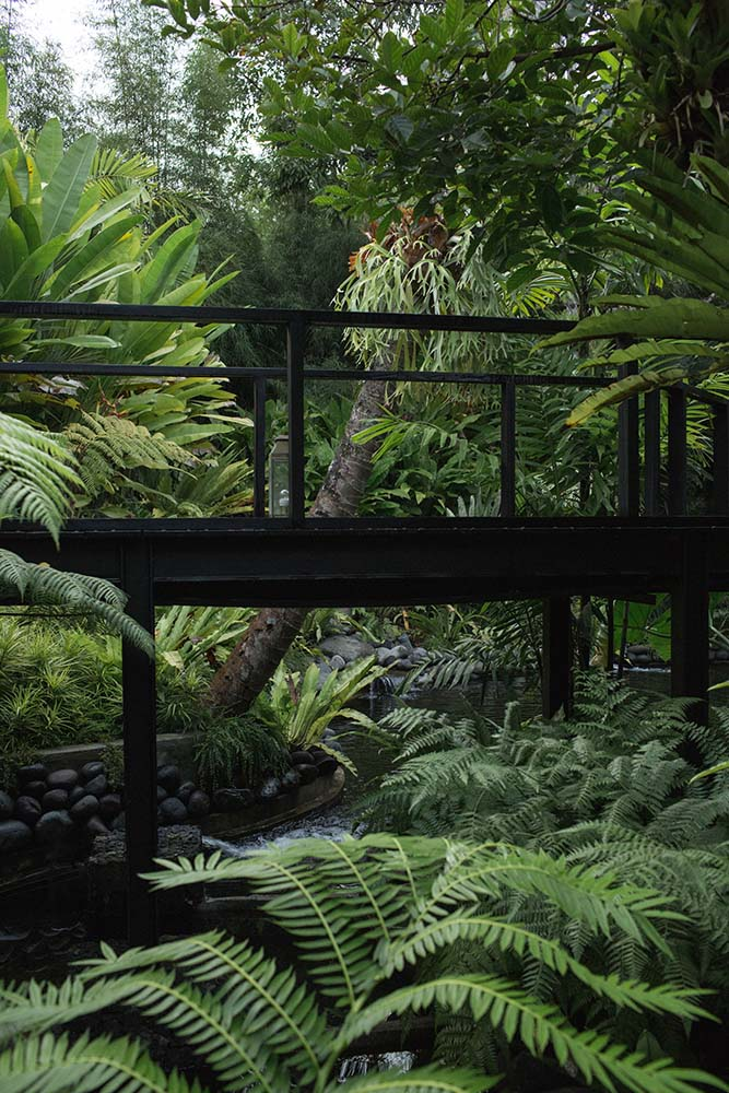 From the bridge walkway, you can see the surrounding landscape of tropical trees, plants and shrubs.