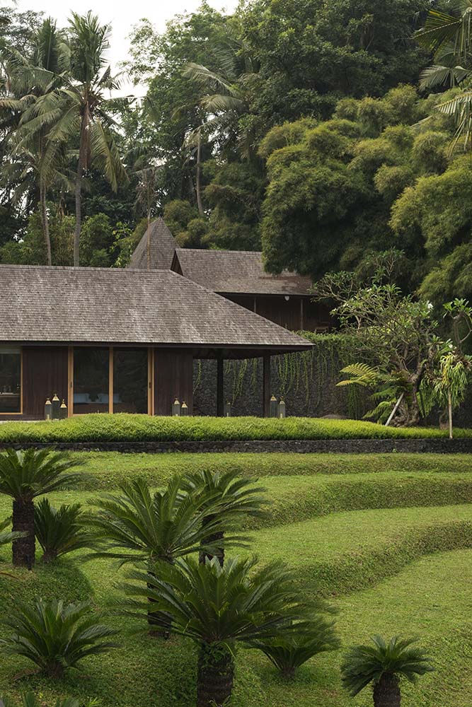 This is a look at the terraced grass lawn leading to the house with open walls and dark roofs complemented by the thick tall trees in the background.