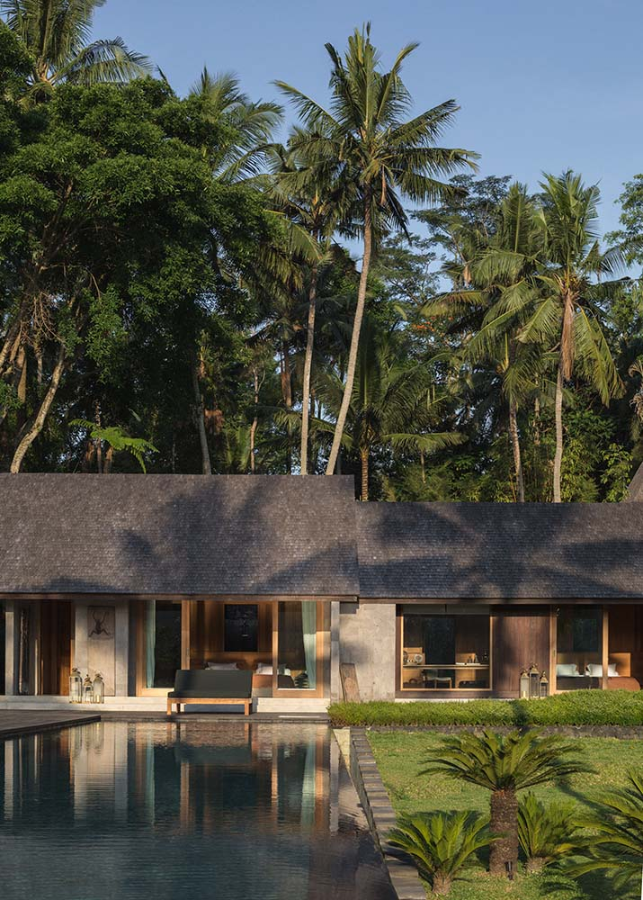 The earthy tones of the house exterior are complemented by the forest of tall tropical trees in the background.