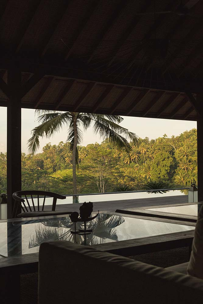 This is a view from the vantage of the living room sofa showcasing the tropical trees of the poolside area outside.