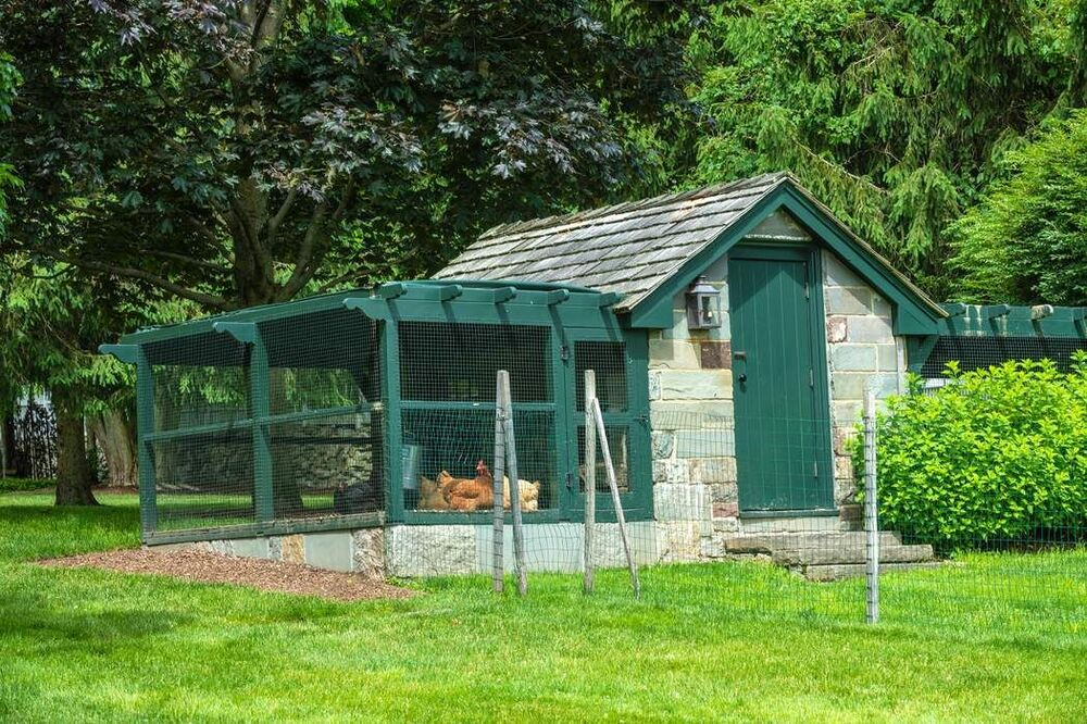 This is the chicken house with green accents to its rustic exteriors complemented by the shrubs and trees. Image courtesy of Toptenrealestatedeals.com.