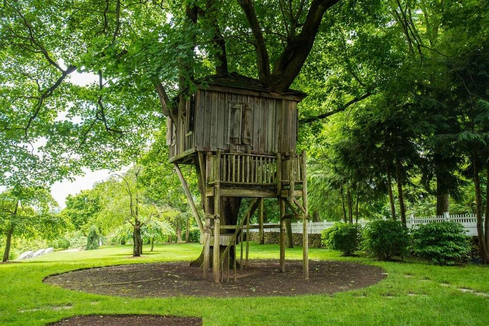 This is a look at the kids' treehouse with wooden structures attached to the tall mature tree surrounded by trees. Image courtesy of Toptenrealestatedeals.com.