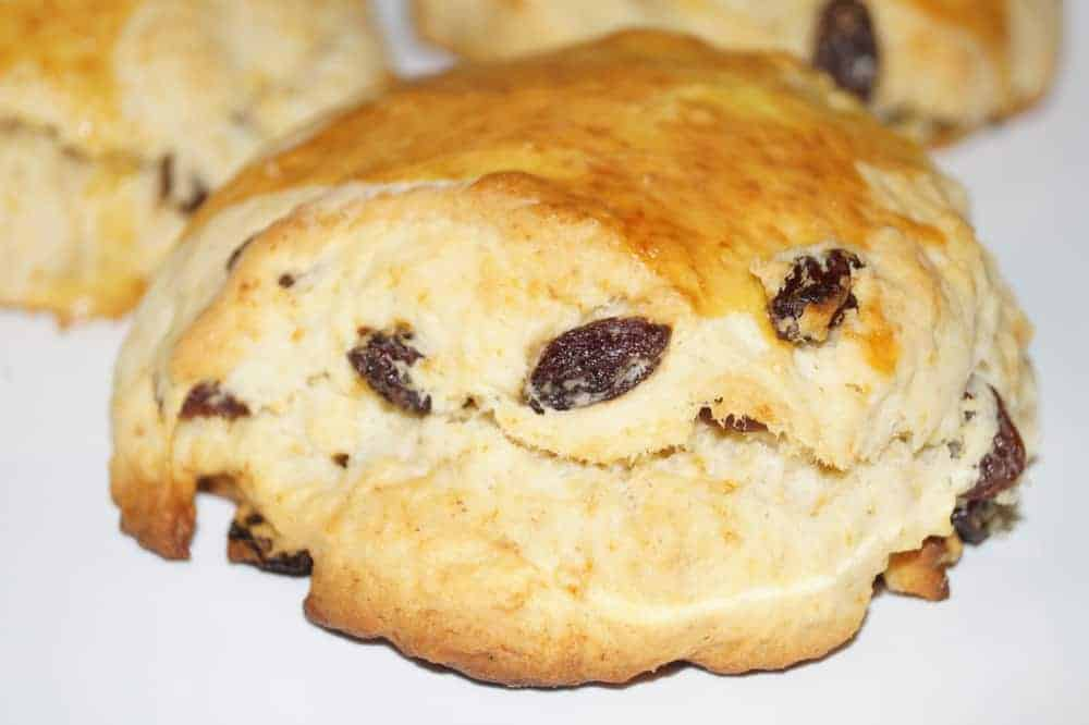 This is a close look at Scottish scone with raisins.