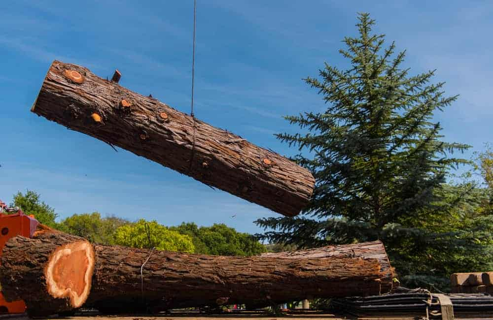 A large piece of redwood log being moved with a crane.