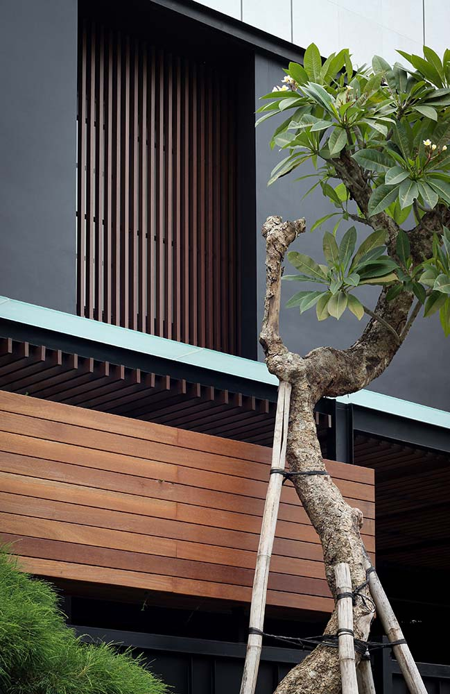 This is a close look at the tall and gnarled tree that complements the wooden panels of the house exterior that has mostly dark gray exteriors.