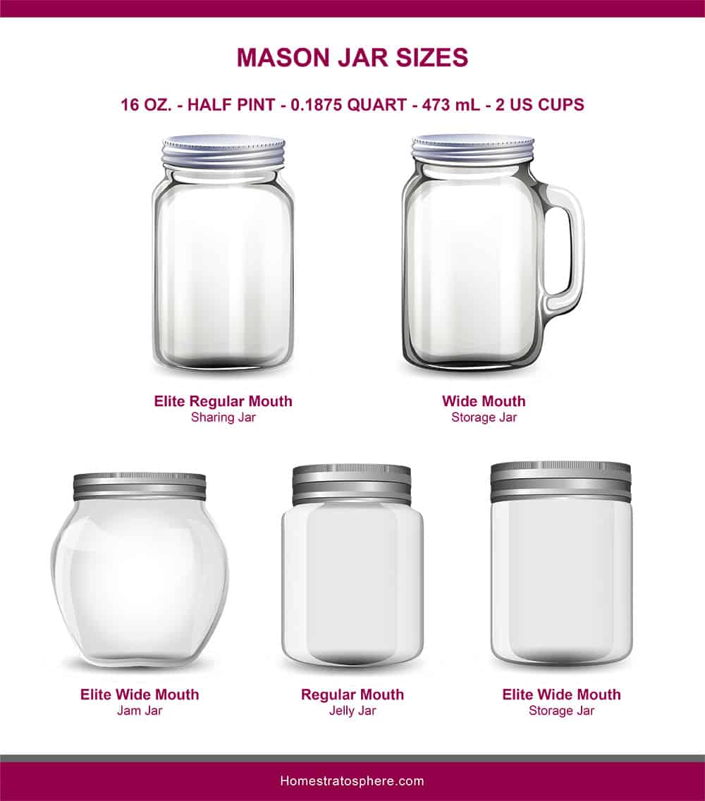 This is an illustrated diagram depicting the different mason jar sizes showcasing the elite regular mouth, wide mouth, elite wide mouth, regular mouth and elite wide mouth in 16 ounces.
