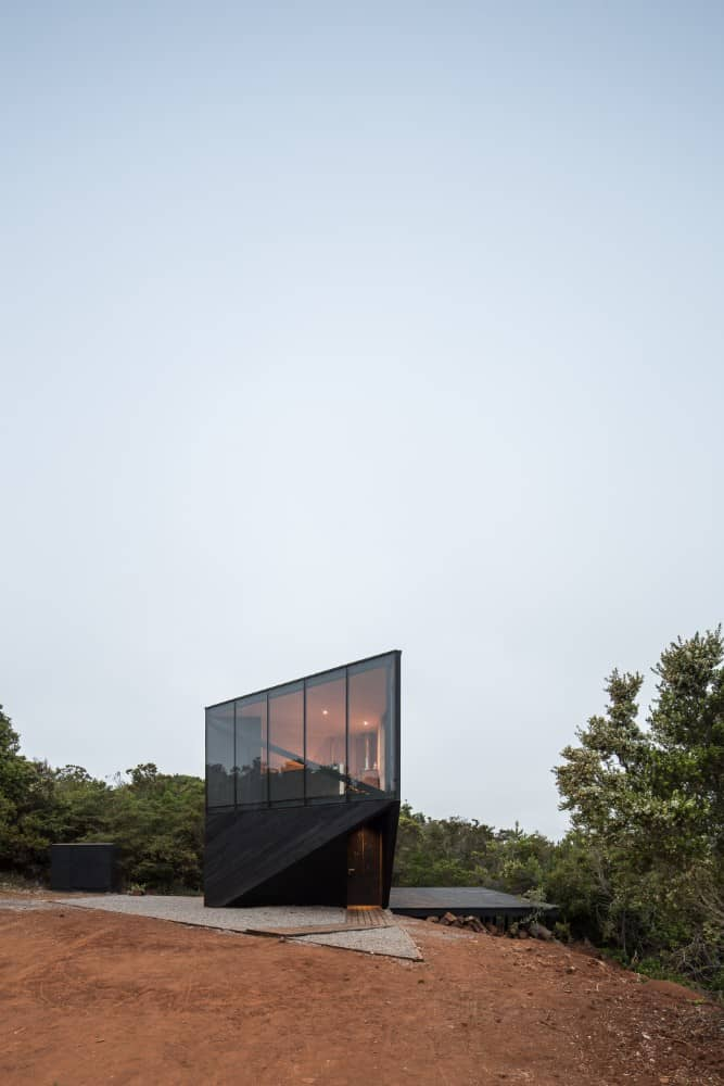 This is an exterior view of the house showcasing the unique modern look of black exterior walls and glass walls with a background of trees.