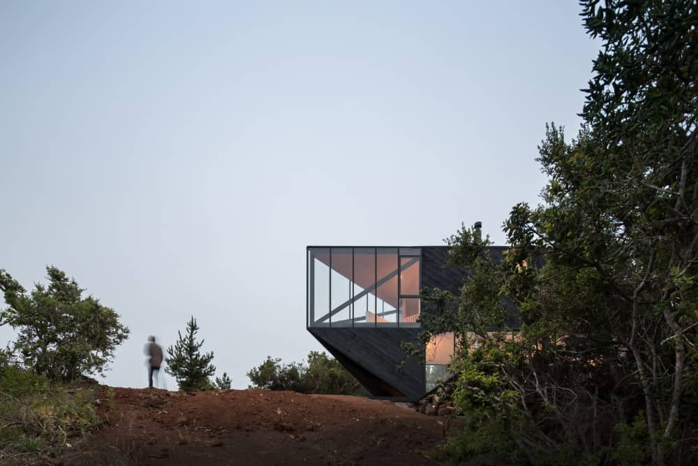 This is an exterior view of the house from afar showcasing more of the surrounding landscape of trees and soil that make the modern look of the house stand out.