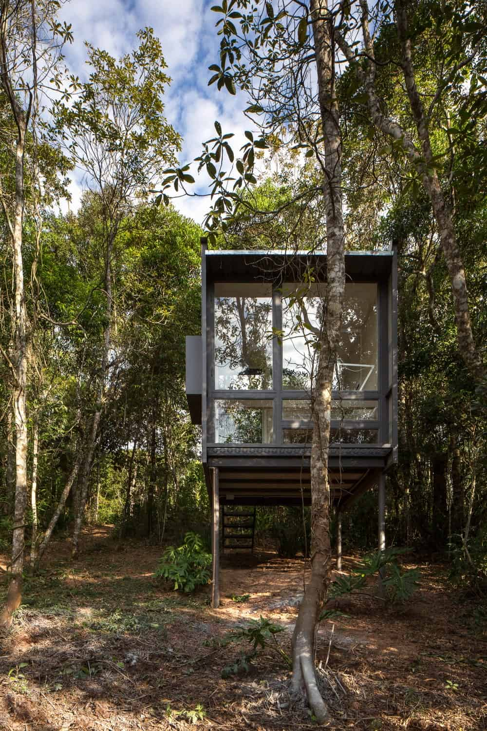 This is a view of the house with a large glass wall, stilts and a staircase surrounded by tall trees and shrubs.