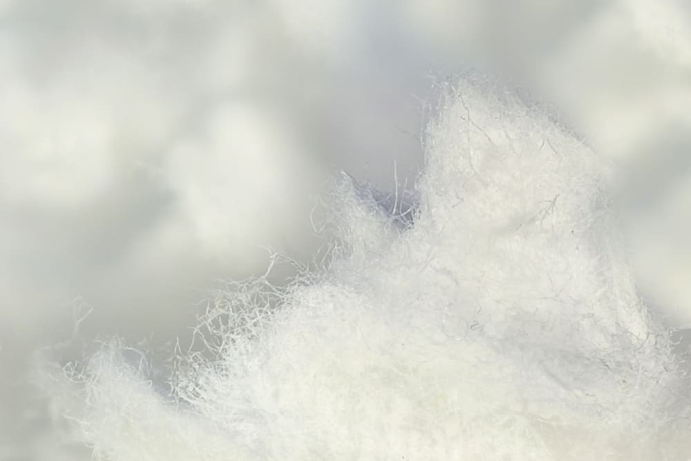 This is a close look at a cellulose fiber insulation.