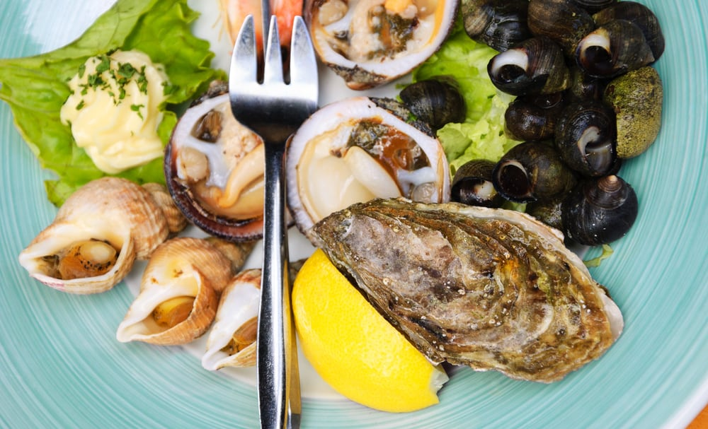 This is a close look at a pate of seafood that has clams and oysters.