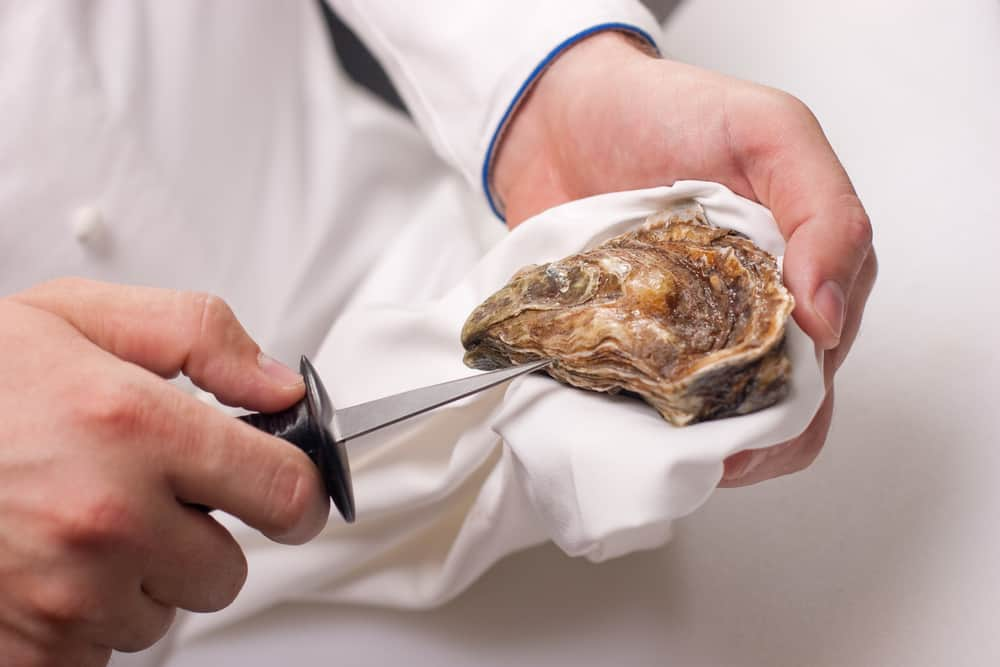This is a close look at a chef shucking an oyster.