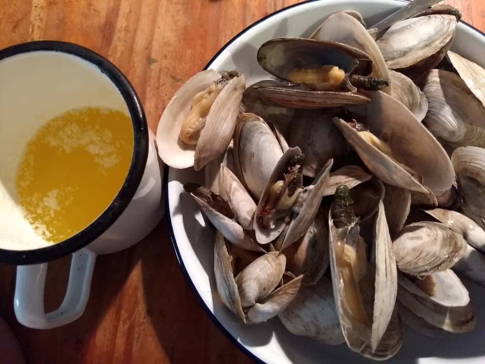 A bowl of steamed soft shell clams with a side of butter.