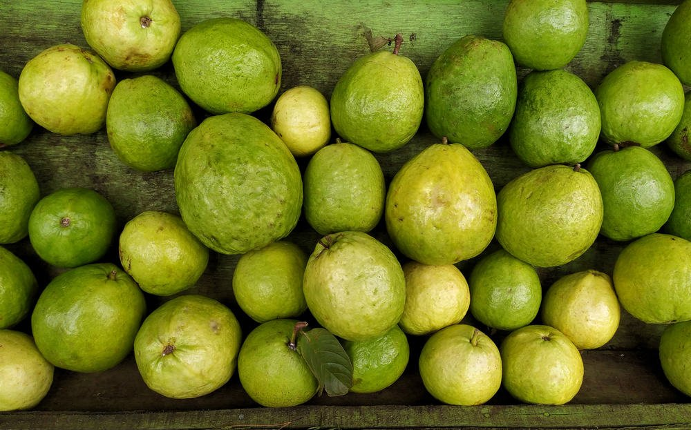 A bunch of guava on display at the market.