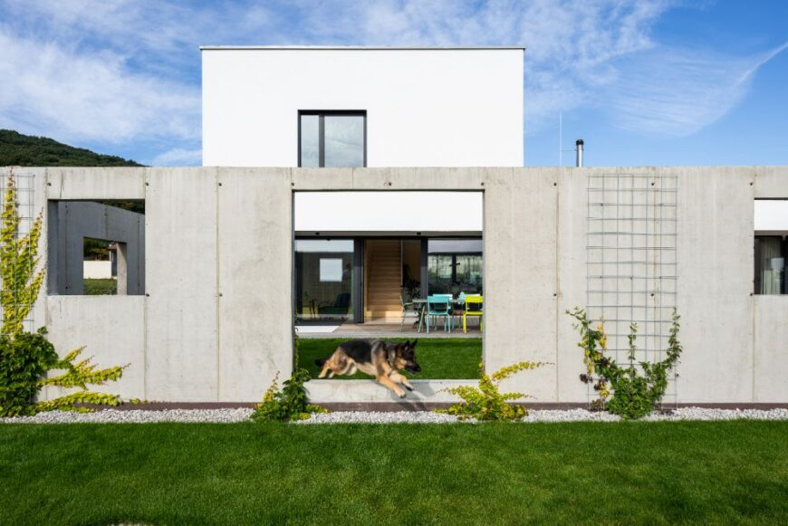 House for a Family with Pets by Sadovsky & Architects