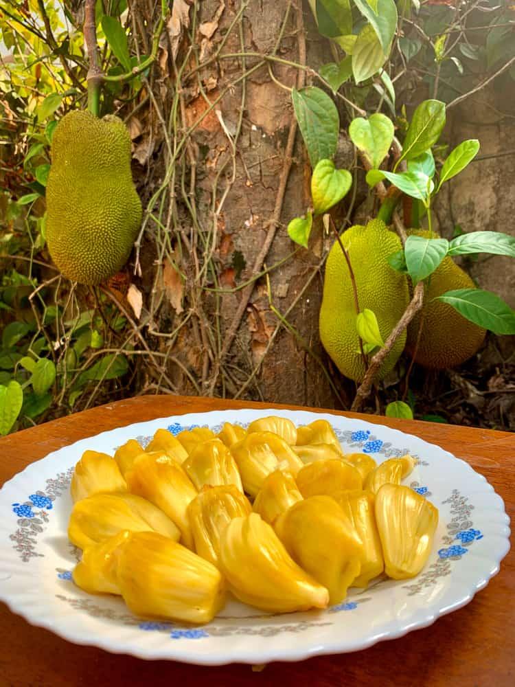 Ripe cochin jackfruit pieces on a plate.