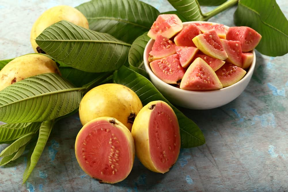 A bowl of sliced red Indian guava.