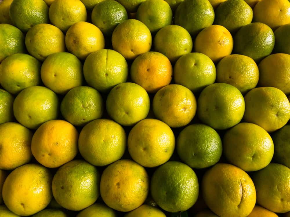 This is a bunch of Lima oranges on display at a market.
