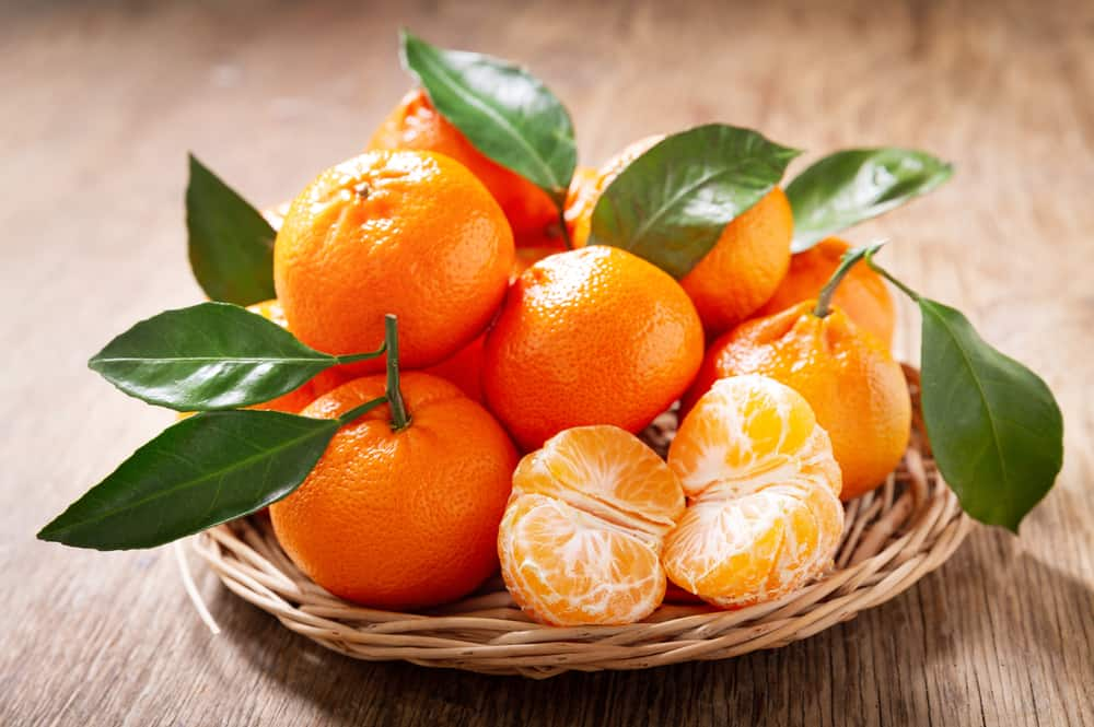 These are fresh and ripe Mandarin oranges on a basket.