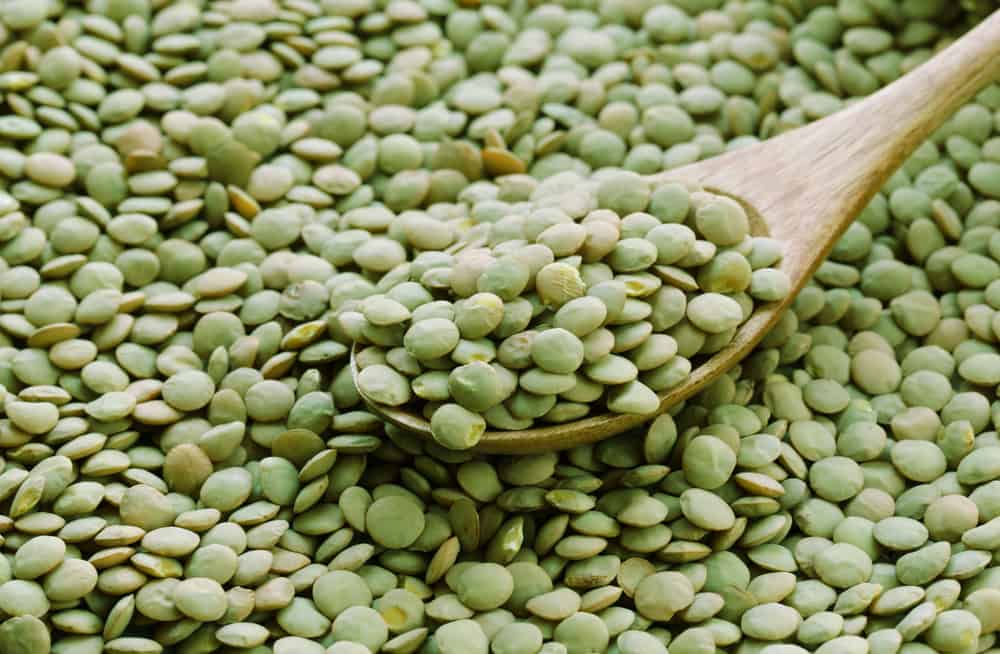 A close look at the bunch of green lentils on storage.
