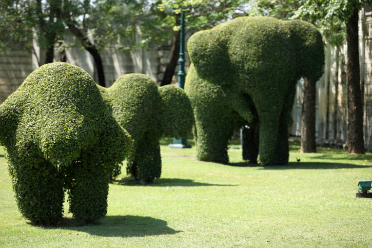 Three topiary elephants; a mother elephant with two baby elephants in large grass field
